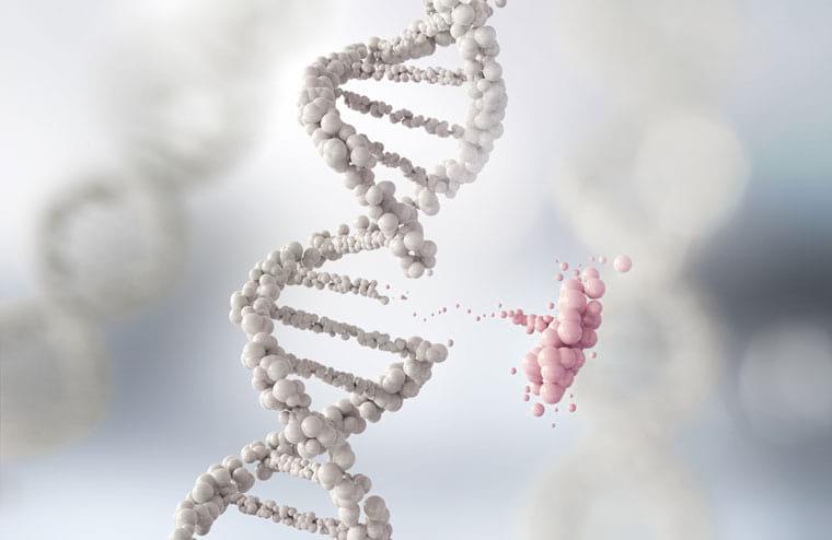 רשלנות בבדיקות גנטיות